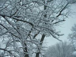 February_2008_074